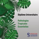 Photo Diplôme d'Université de Pathologies Tropicales Essentielles à distance