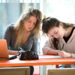 Photo Réunions d'information sur les formations du CELSA destinées aux professionnels. Inscrivez-vous vite !